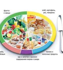 Калорийность питания и здоровье