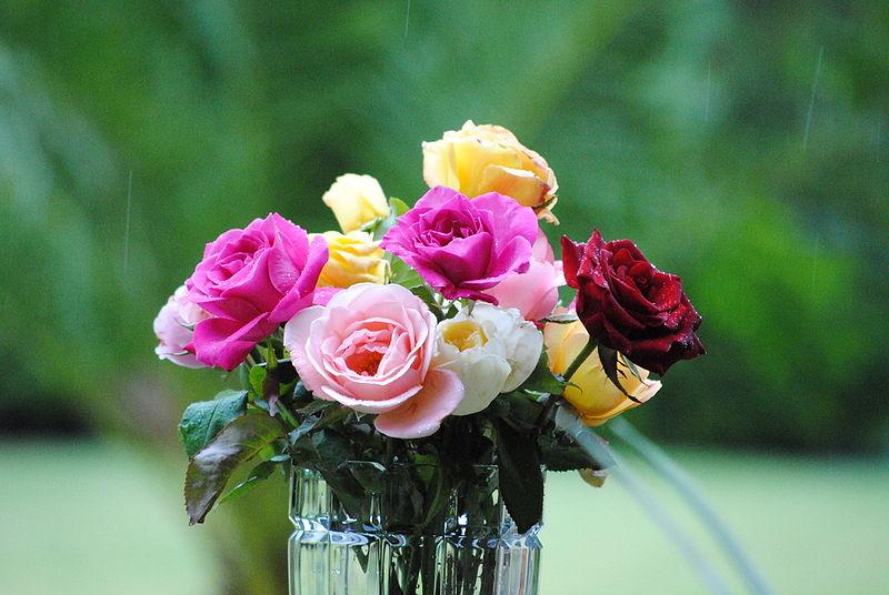 Букет цветов без воды