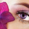 cvetnye-linzy